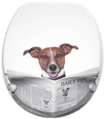 WC-Sitz Newspaper