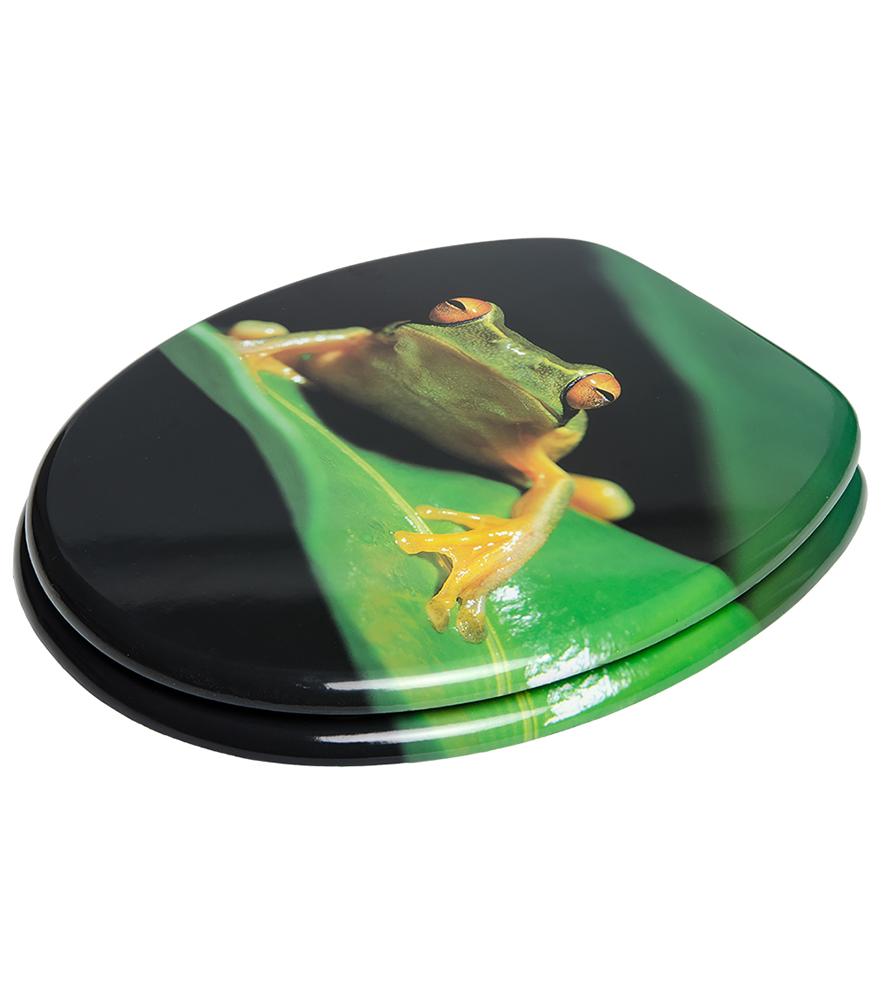 Wc Sitz Frosch Gr 252 N Wcshop24 De