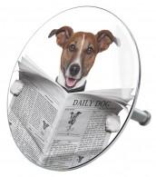 Badestöpsel Newspaper