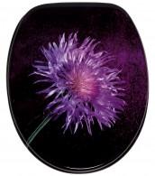 WC-Sitz Purple Dust