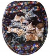WC-Sitz Katzen