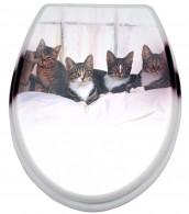WC-Sitz Fünf Katzen